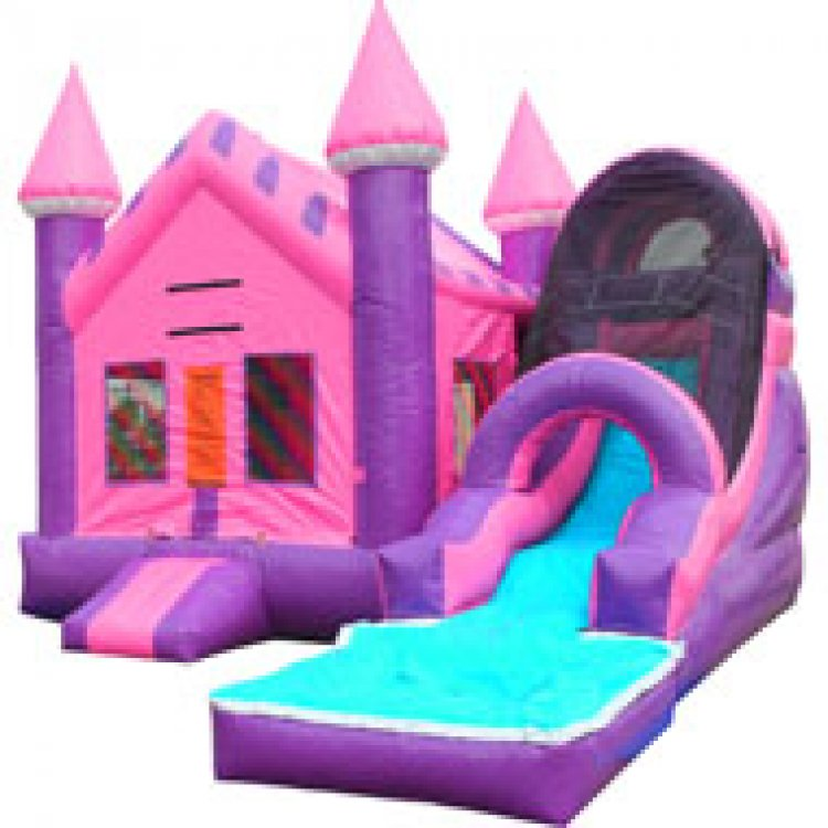 Pink Castle Combo Waterslide